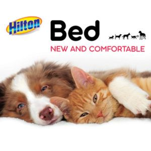 HILTON beds for dogs and cats